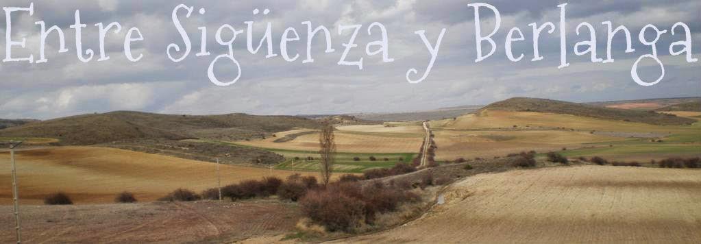 Entre Sigüenza y Berlanga