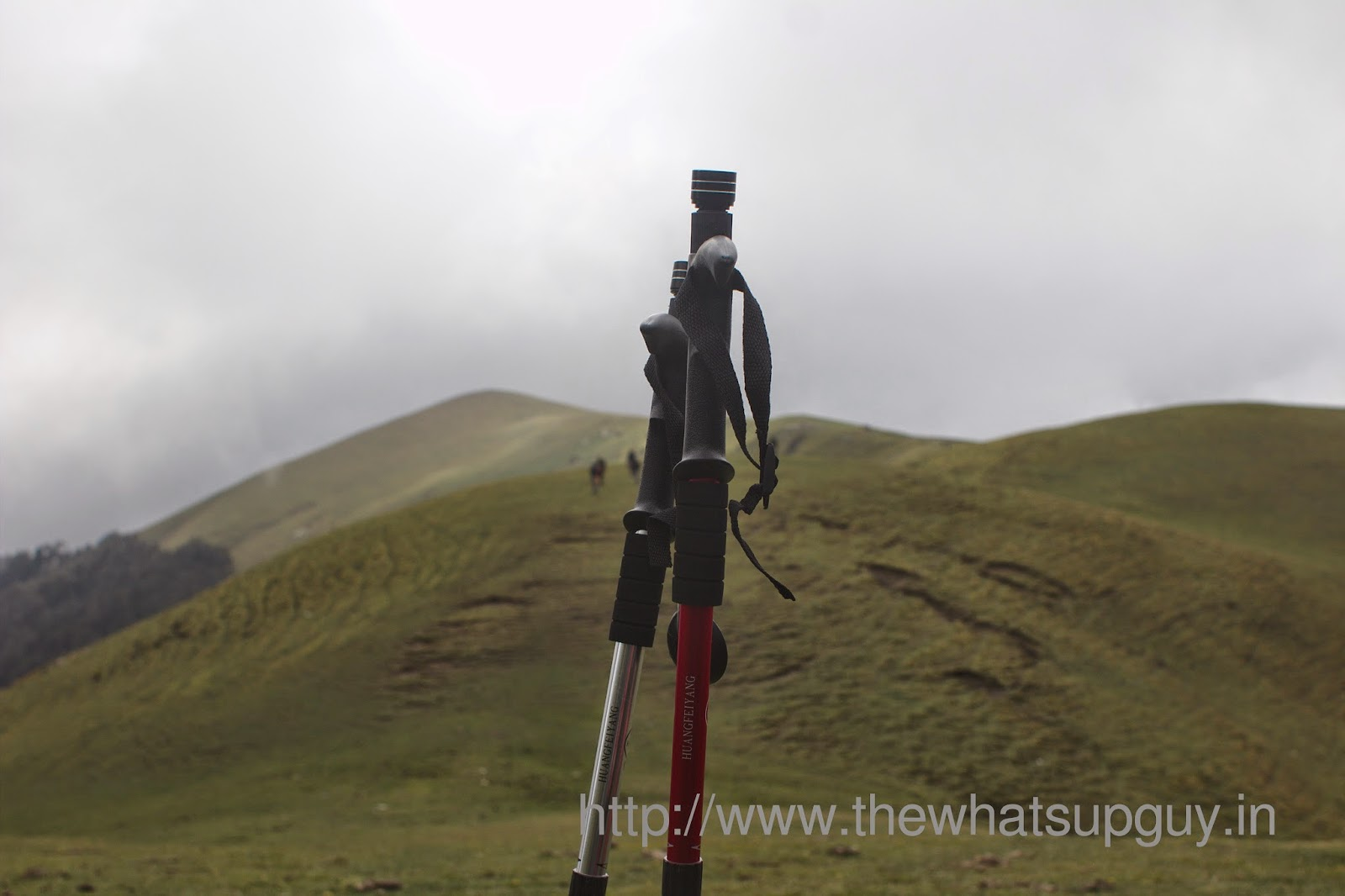 Ali-Bugyal-Meadows-End-Roopkund-Trek-With-India-Hikes-Day-2