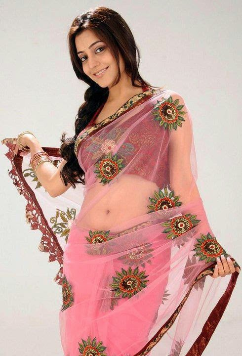 Hot South Indian Actress Transparent Saree Pictures
