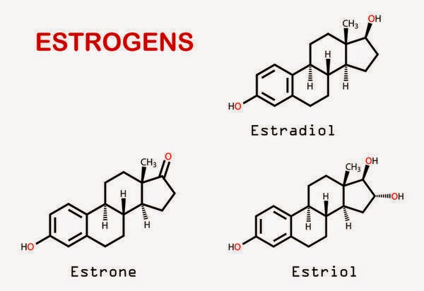 how to stop testosterone from converting to estrogen