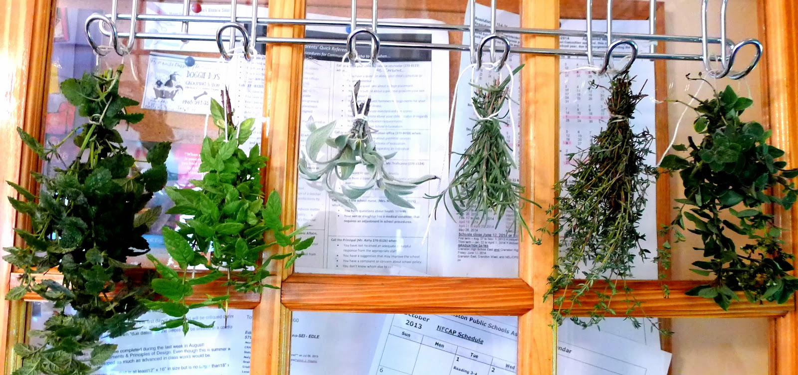 Preserving herbs for the winter