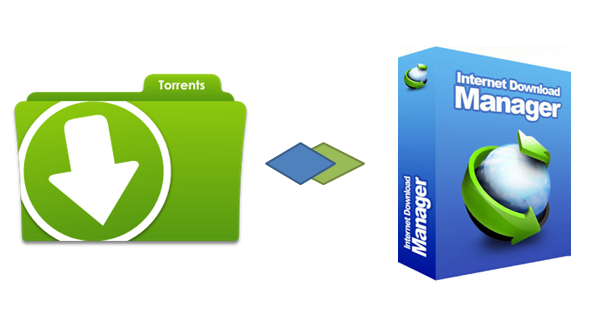 can i download torrent files using idm