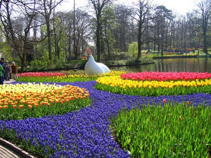 Voyage vers la Hollande aujourd'hui pour revoir le site unique de Keukenhof (Lisses, Pays-Bas), à l'apogée de ses floraisons. Keukenhof_gardens