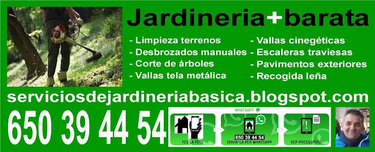 Serviciosdejardineriabasica jardineria barata para tu for Jardineria barata barcelona