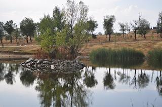 leganes-mi-ciudad-arroyo-butarque-5