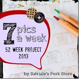 52 WEEK PROJECT 2013