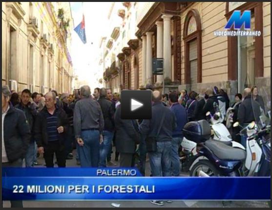 http://www.videomediterraneo.it/notizie/politica/15272-palermo-22-milioni-per-i-forestali.html