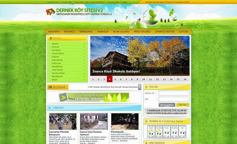 Wordpress Dernek Tema