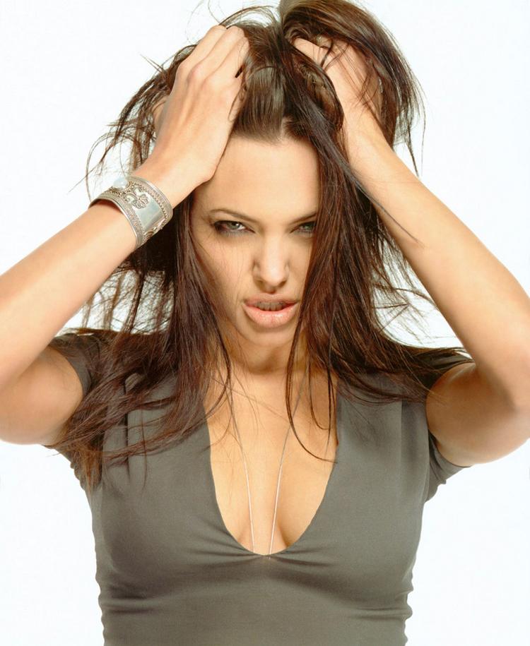 Angelina Jolie Long Hairstyles 8