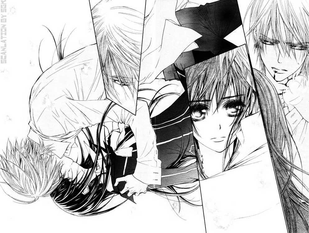 JKs Wing Vampire Knight Manga Review
