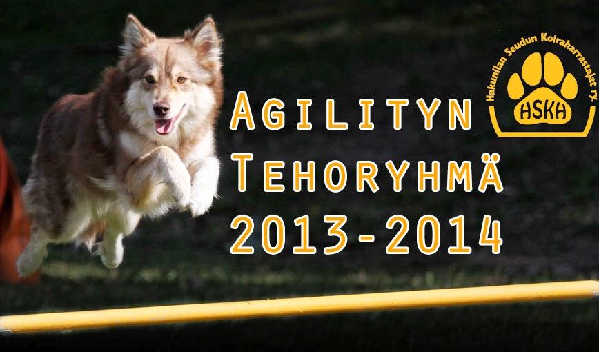 Agilityn Tehoryhmä