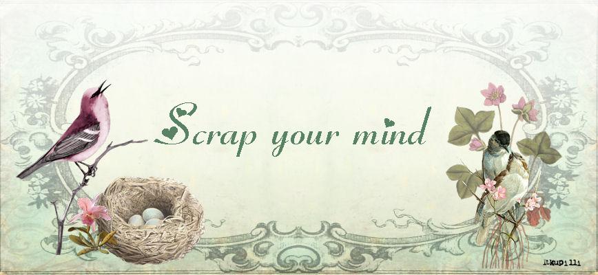 Scrap your mind