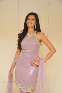 Hasha Nandini pos at cmr aashadam event 006.jpg