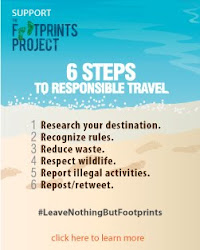 #LeaveNothingButFootprints