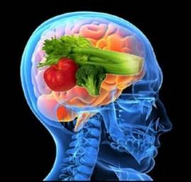 nutrisi untuk otak