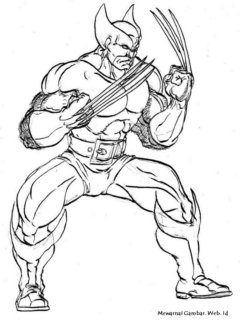 Setelah mengetahui tentang siapa Wolverine ini sekarang saya ingin