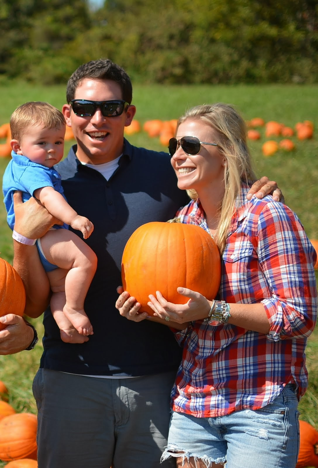 2013 pumpkin patch