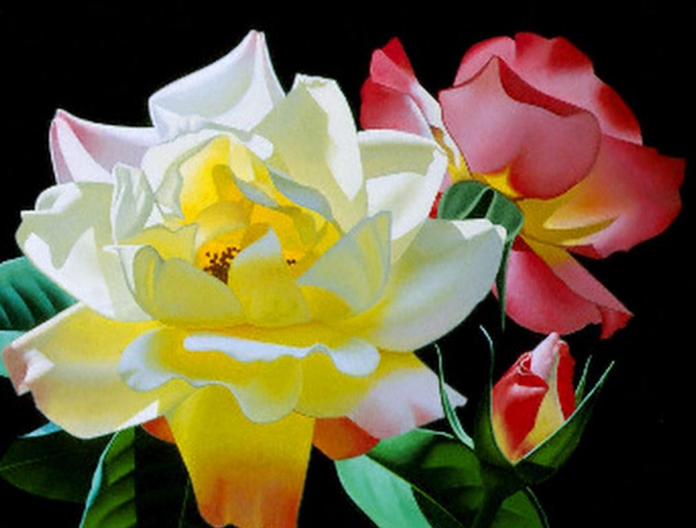 Cuadros pinturas oleos cuadros bonitos de flores for Cuadros bonitos y modernos