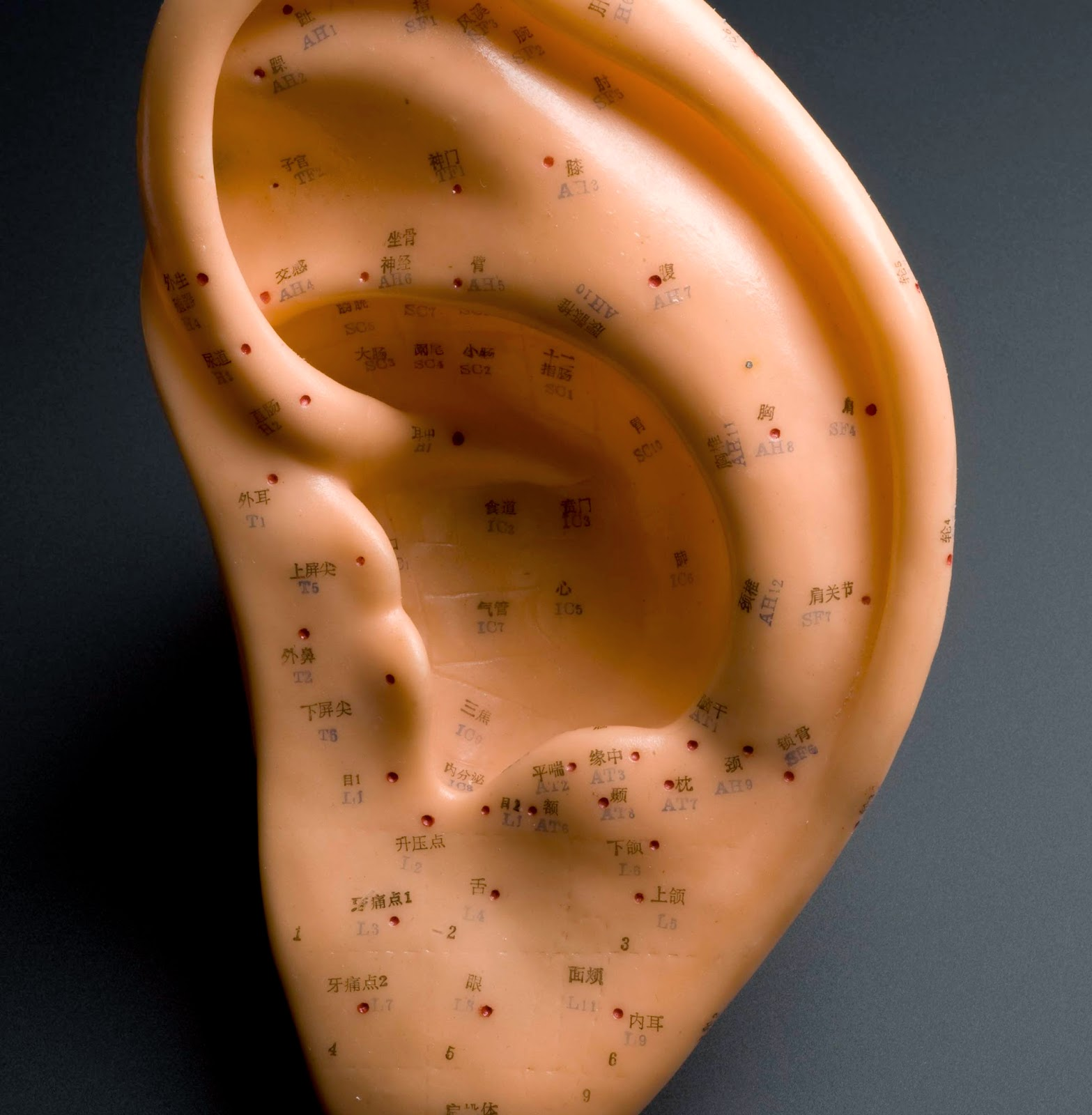 Ear Infections and Traditional Chinese Medicine
