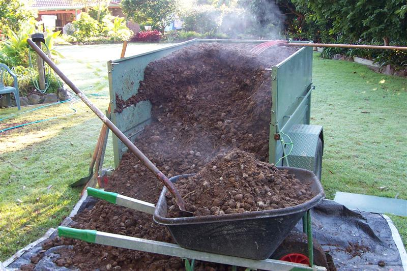 subtropical queensland open garden manure and compost