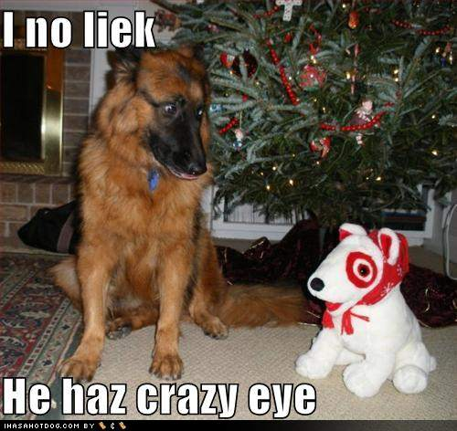 http://2.bp.blogspot.com/-jFInweiP8x0/T2rCH9NjAfI/AAAAAAAAF5k/ge-65Xbsss0/s1600/funny-dog-pictures-dog-does-not-like-this-stuffed-animal.jpg