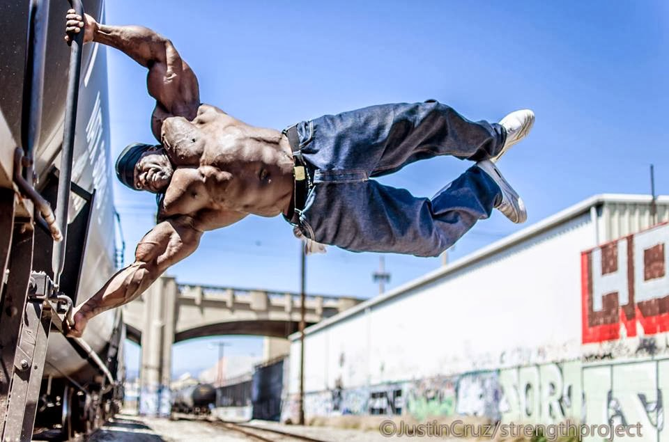 strength fighter™: monster: the kali muscle story, Muscles