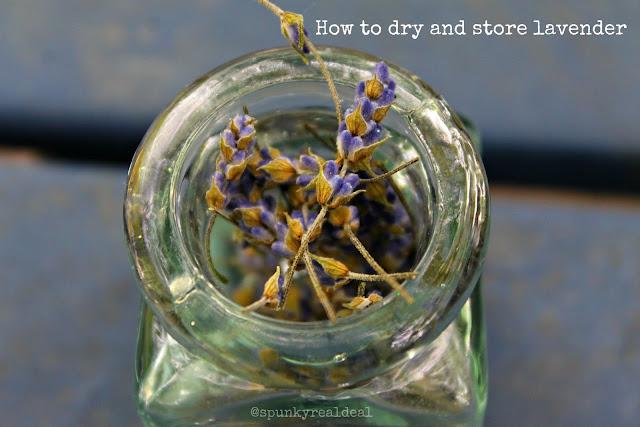 How to store and dry lavender #lavenderfreakweek