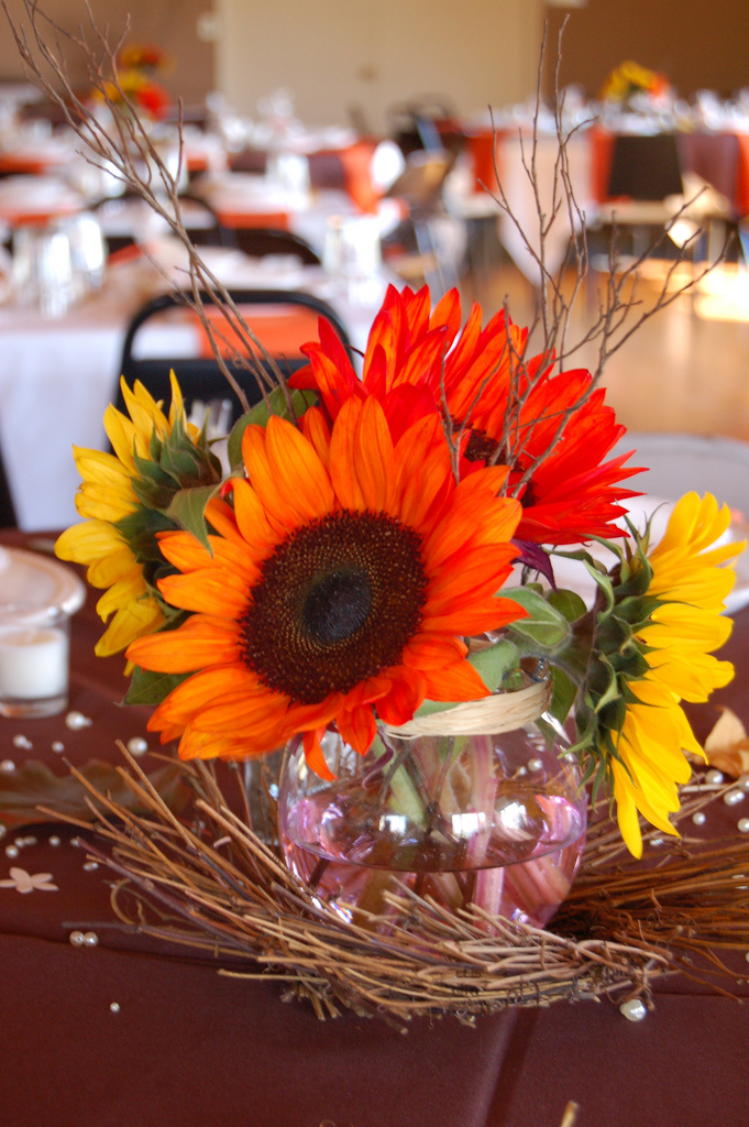 Ideas For avoiding some of the Fall Wedding Pitfalls ~ Wedding