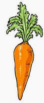eat carrot