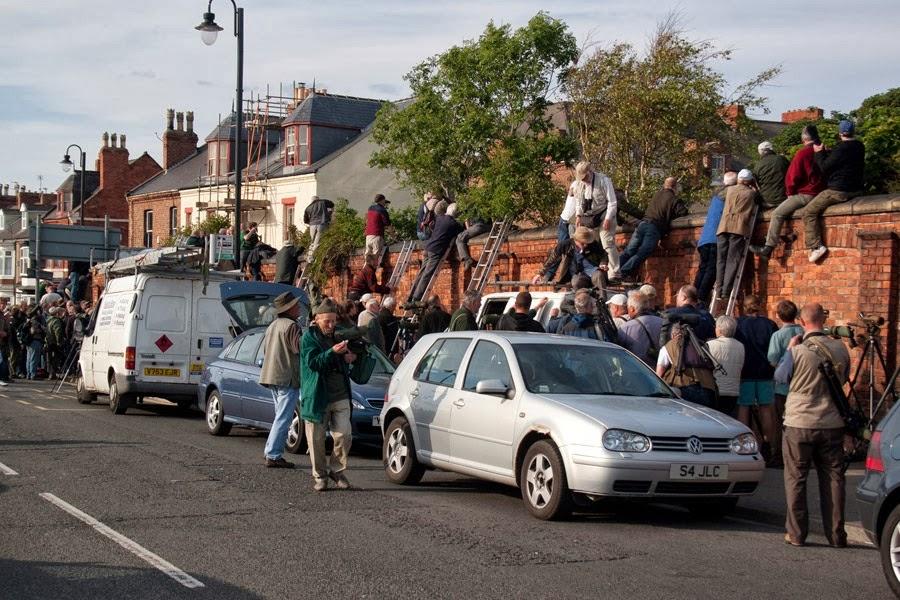 Hartlepool Headland (Martyn Sidwell)