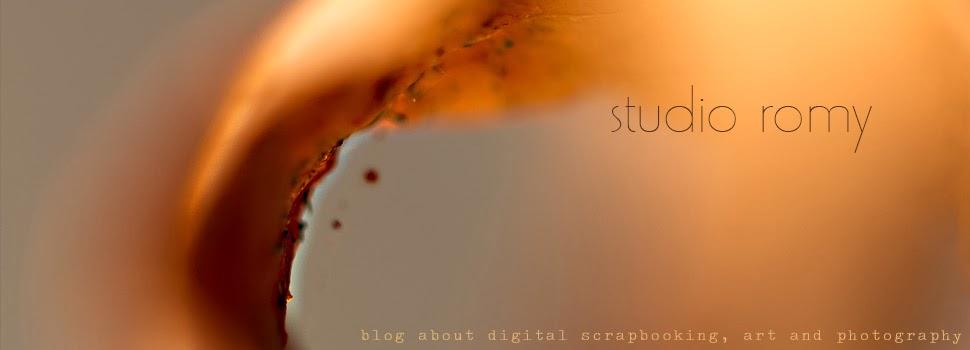 Studio Romy blog