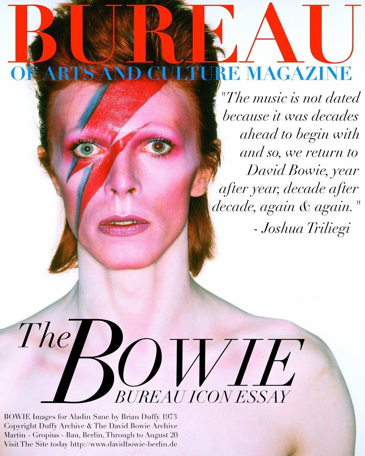 DAVID BOWIE: ICON Essay