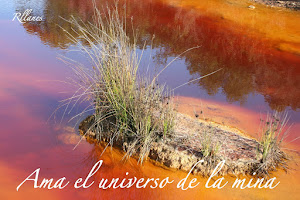 EL UNIVERSO DEL COLOR