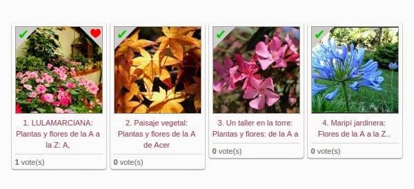 Nombres de plantas con letra i pictures to pin on for Nombres d plantas ornamentales