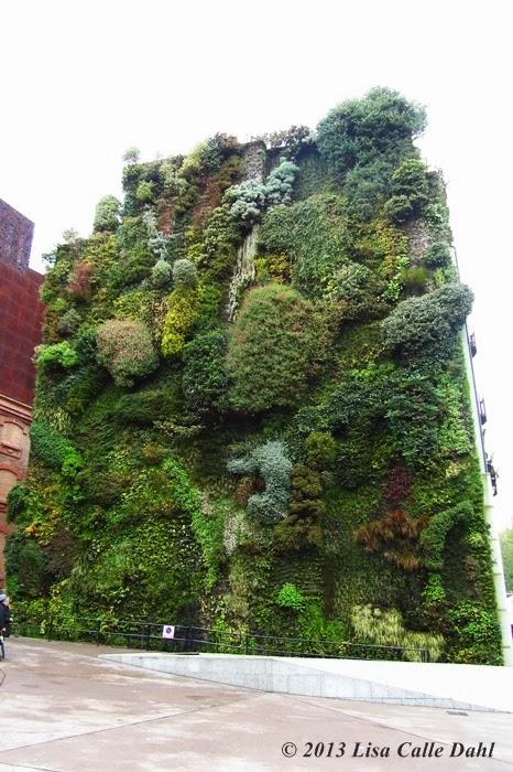 Descubriendo hojas jard n vertical de caixa forum en madrid for Jardin vertical caixaforum madrid
