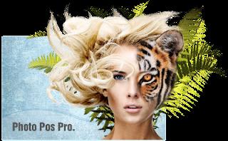 Photo Pos Pro v3 - logo