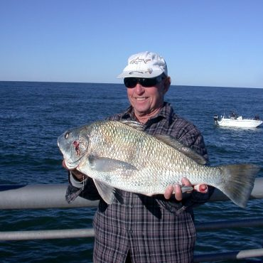 On foot angler sebastian inlet report for Sebastian inlet fishing report