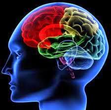 Obat Mujarab kanker Otak