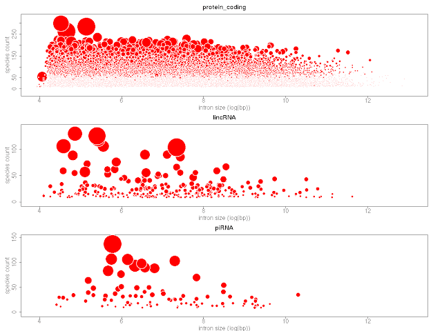 bubble plot in R