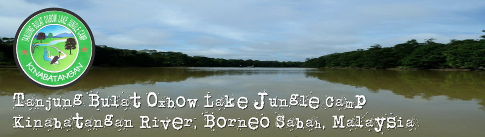 Welcome to Tanjung Bulat Oxbow Lake Jungle Camp Kinabatangan