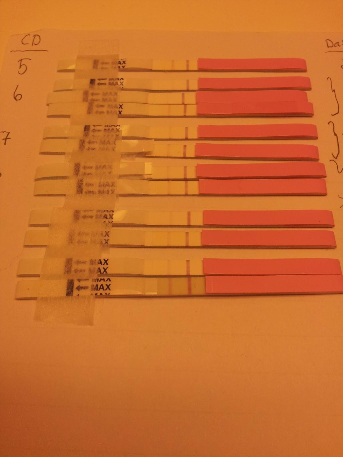 hur snabbt efter ägglossning kan man testa