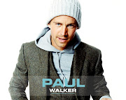 paul walker wallpaper hd. paul walker wallpaper hd. Posted by dog at 07:49
