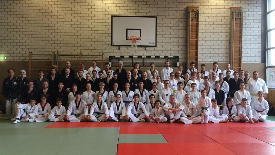 Gimnasio han kuk hapkido taekwondo seminario del maestro for Gimnasio telde