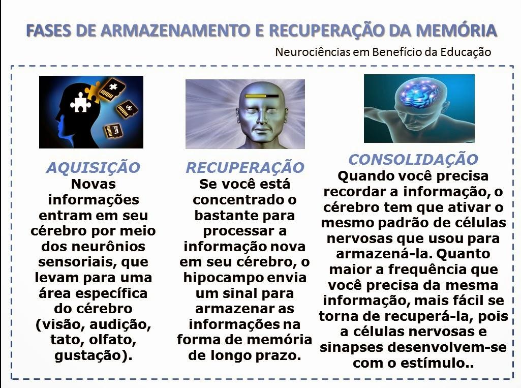 Resultado de imagem para sinapses e memória