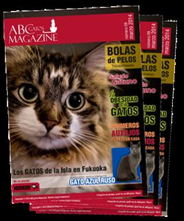 ABCgatos Magazine