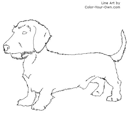 dachshund coloring page - inkspired musings puppy love