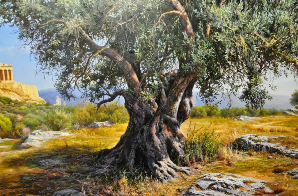 paisajes-decorativos-naturales