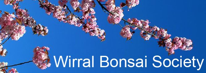 Wirral Bonsai Society