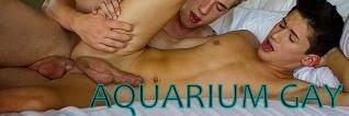 http://2.bp.blogspot.com/-jJPvleobTa8/U7HkA3c1HbI/AAAAAAAAFpU/WHft2cQG97U/s1600/aquarium+gay.JPG