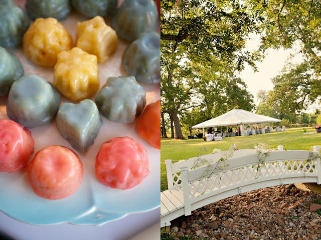 turquoise and coral backyard wedding